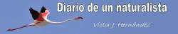 Cabecera blog 'Diario de un naturalista'