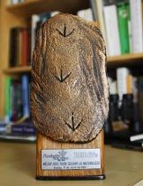 Premio Red Life 2012. Huellas torillo andaluz, ave ibérica.
