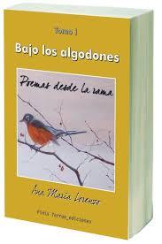 libro_1372590833