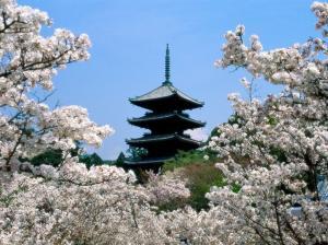 Paisaje de Japón tradicional