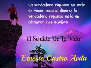 Cita de Ernesto Castro Avila. Le recomendamos que revise sus escritos por posibles faltas de ortografía.