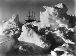 El Endurance atrapado por el hielo en 1915. Foto: Frank Hurley